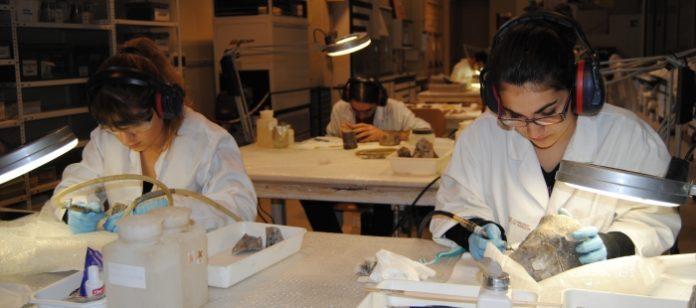 Joven trabajando en el Trabajo en laboratorio de la Escuela Taller de Restauración Paleontológica.Inaem Aragón, Conoce Aragón Goaragón